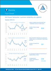 SAPN 2015-16 Summer network performance infographic